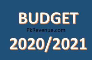 budget 2020/2021
